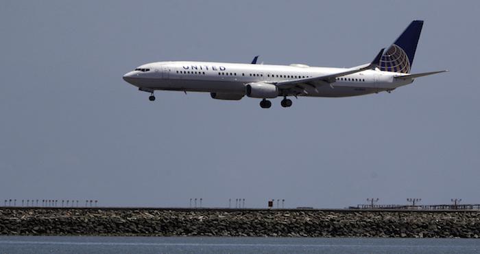 United Airlines envía por error un perro de Estados Unidos a Japón