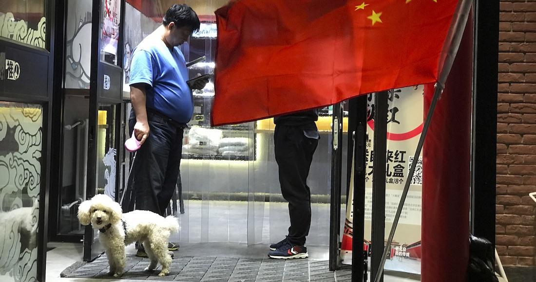Tierno perro aguarda a que le abran puerta invisible