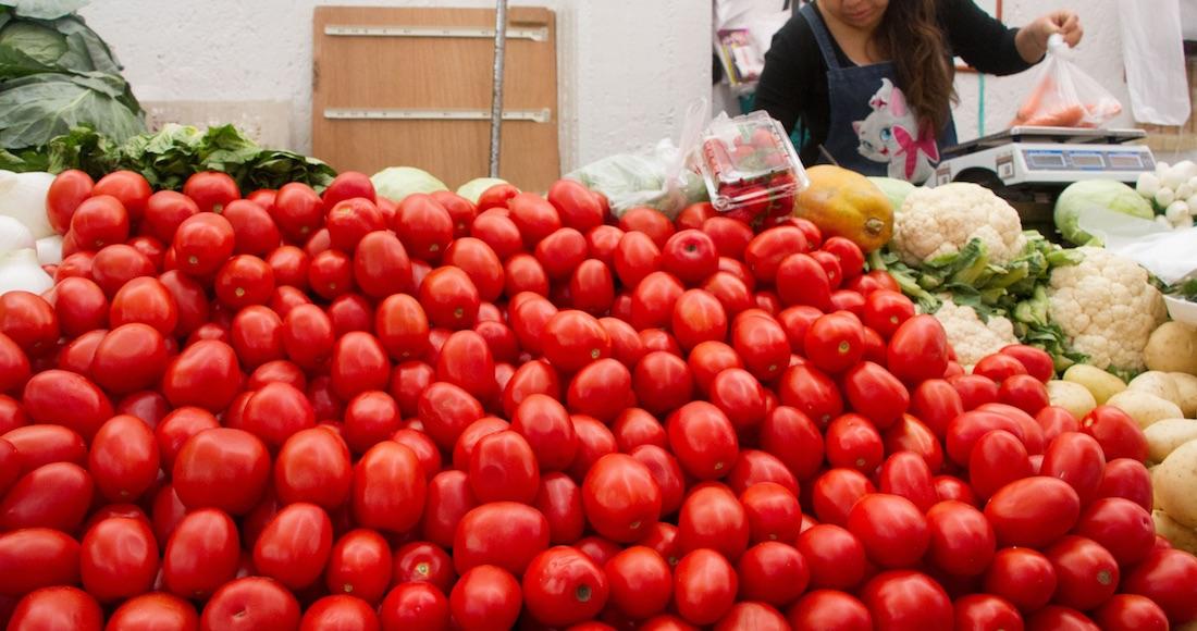 Resultado de imagen para productores de tomate en mexico
