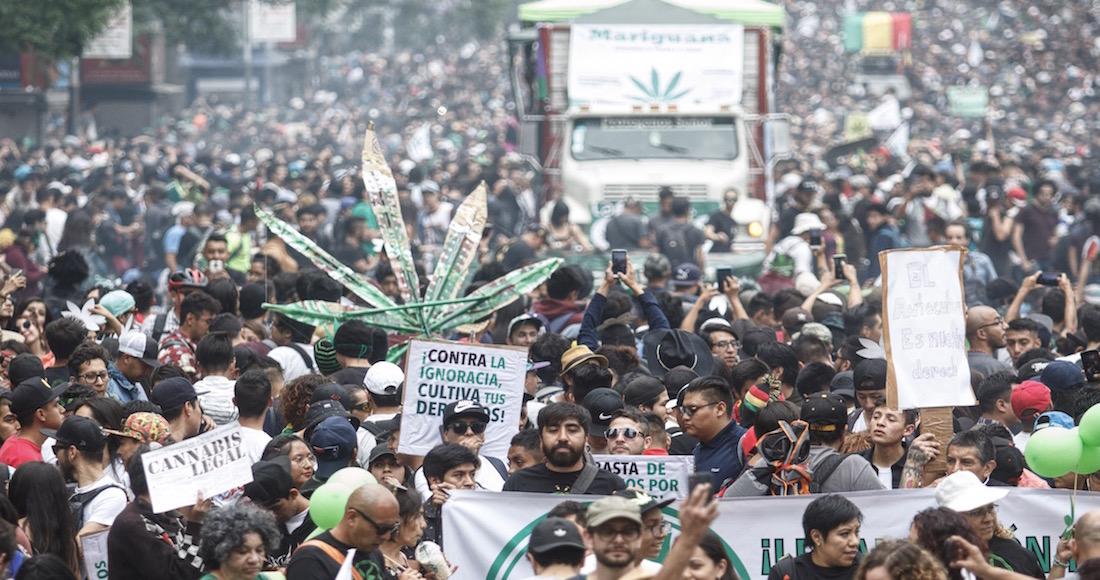 Legalizar La Cannabis Puede Impactar Positivamente En La