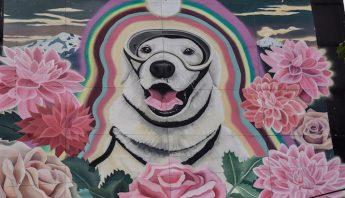 mural_frida-1