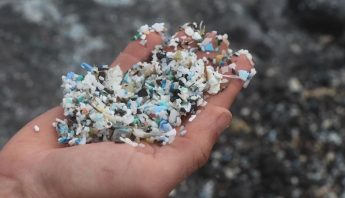 plastciopulmones