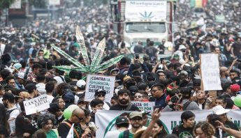 mariguana-legalizacion