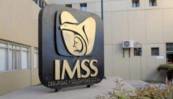 imss (1)