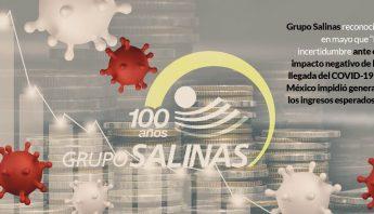 GRUPO-SALINAS