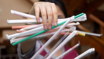 Morelos en la batala por la eliminacion de los plasticos desechables