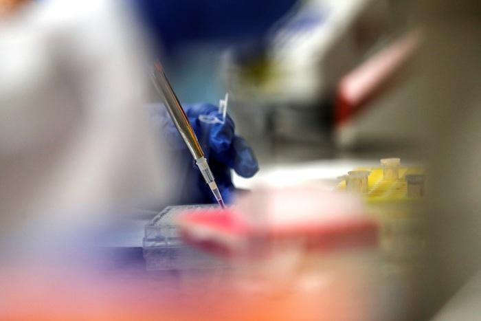Laboratorios y universidades del mundo están en carrera para producir una vacuna que contrarreste al nuevo coronavirus SARS-CoV-2.