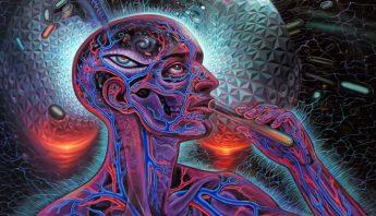 libros-viaje-psicodelia-drogas-mente