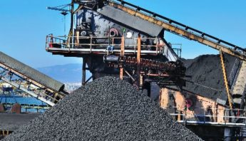 planta-carbonera